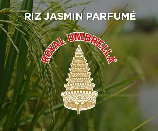 rubriques_site_web_royalumbrella